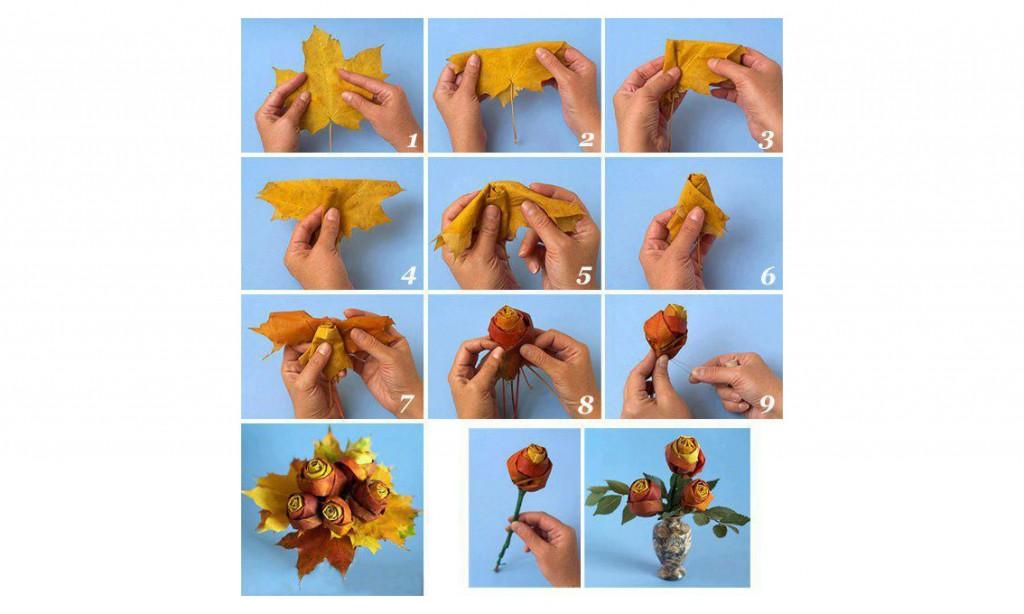 Eccezionale Rose di foglie per regalo - Web a colori! XS27